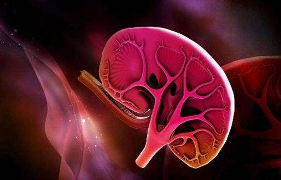 那些病患特別容易患上腎衰竭?得到這三種病要特別注意!