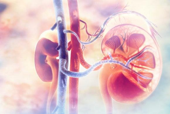 腎衰竭的五大早期症狀