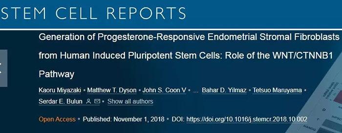 幹細胞為不孕夫婦帶來希望!